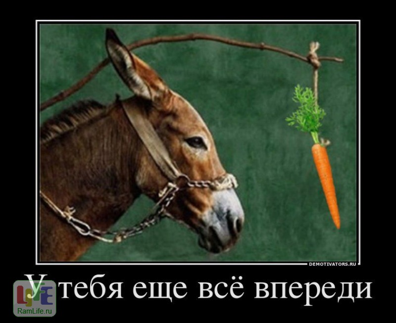 http://www.ramlife.ru/img/0006/12012-f582fc9e_800.jpg